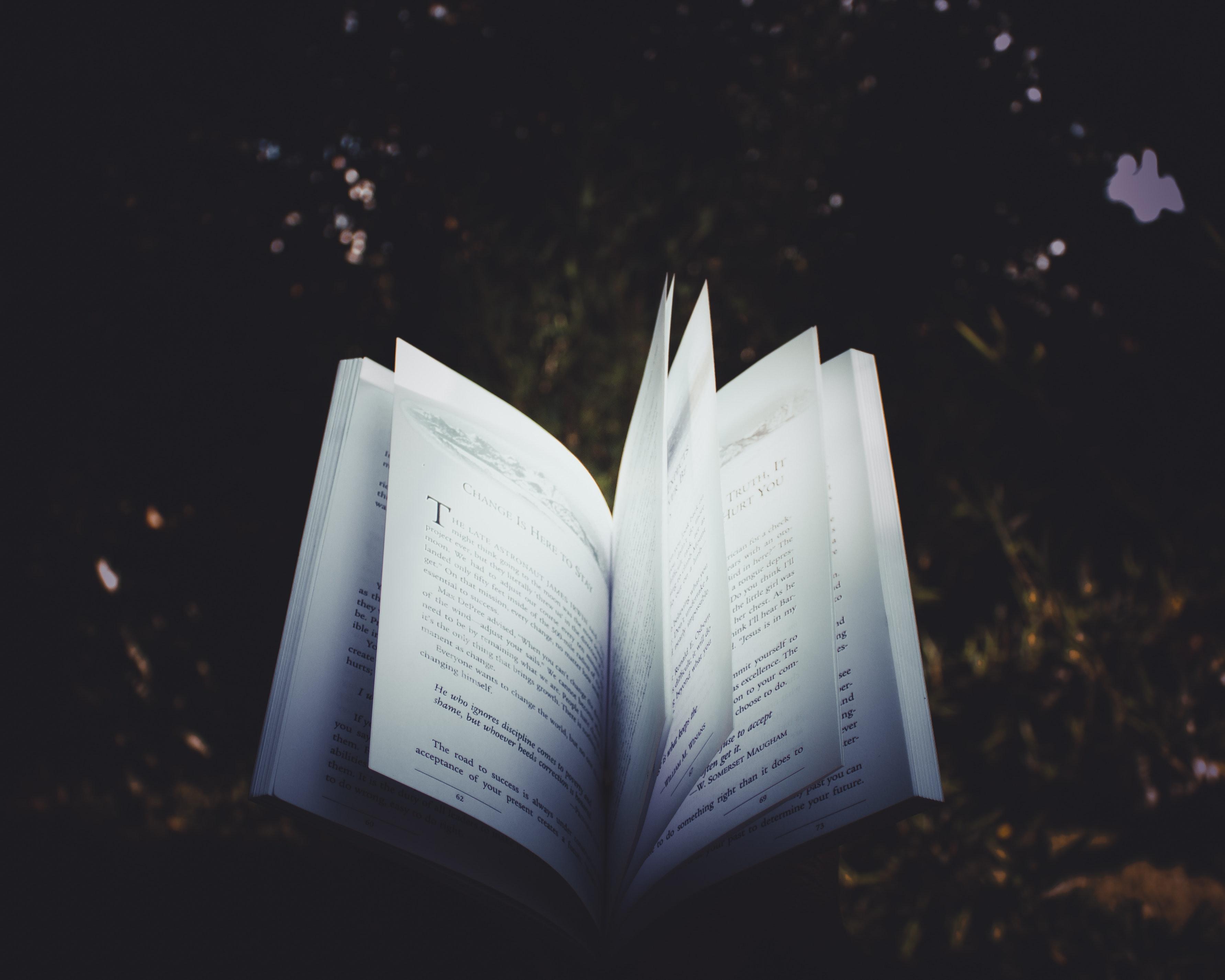 Alman dili ve edebiyatı